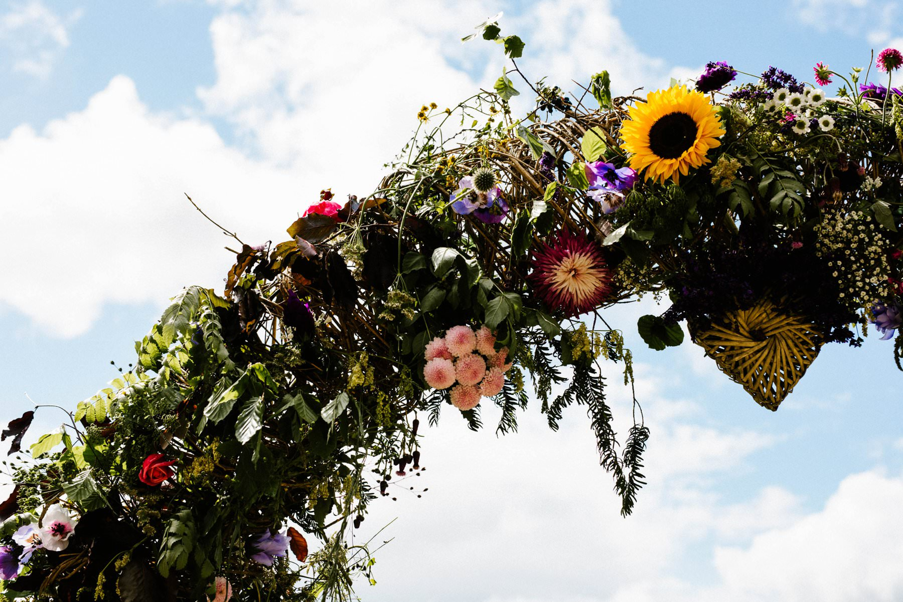 close up of flower arch at fermanagh lakes, ireland