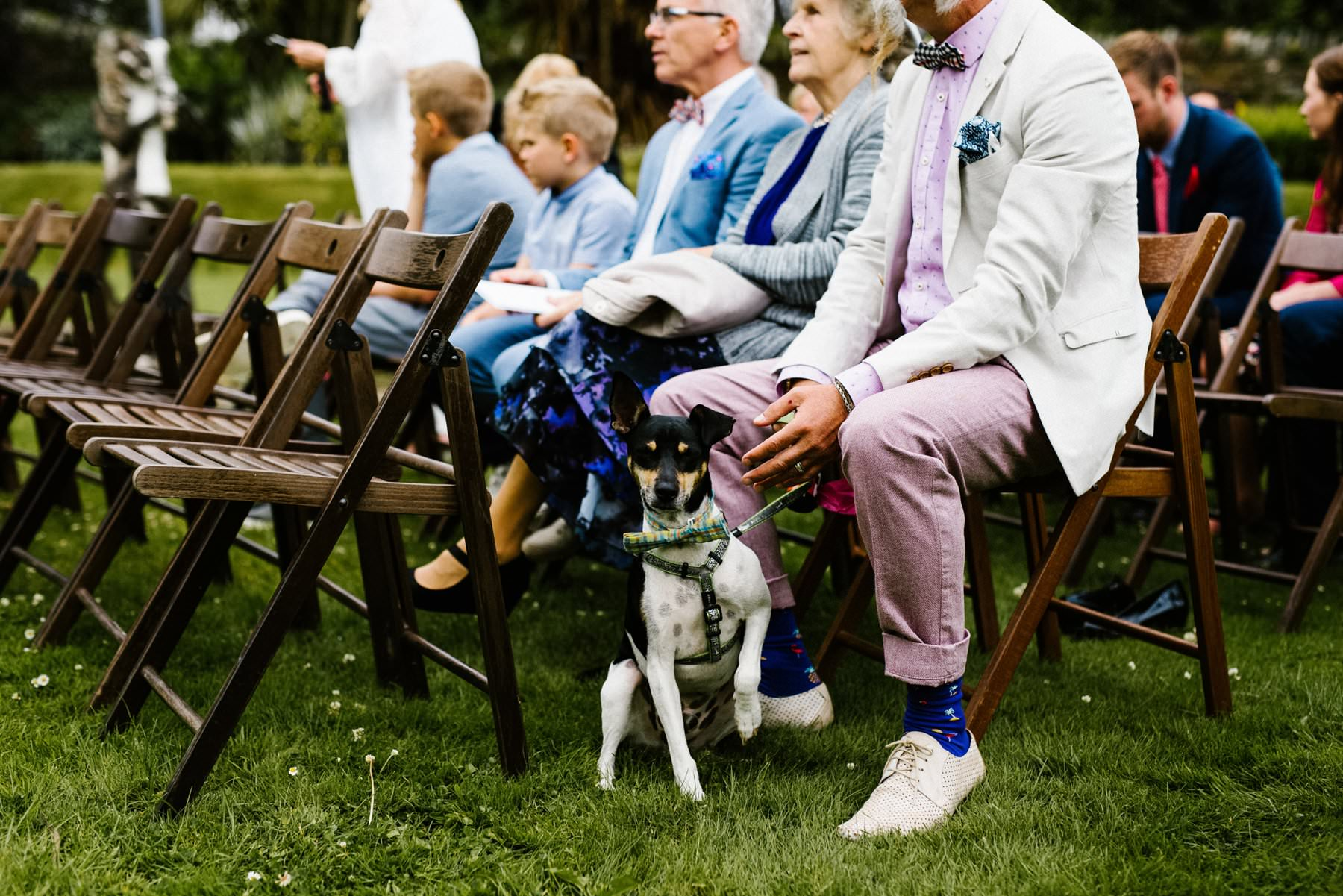 dog at wedding photography northern ireland