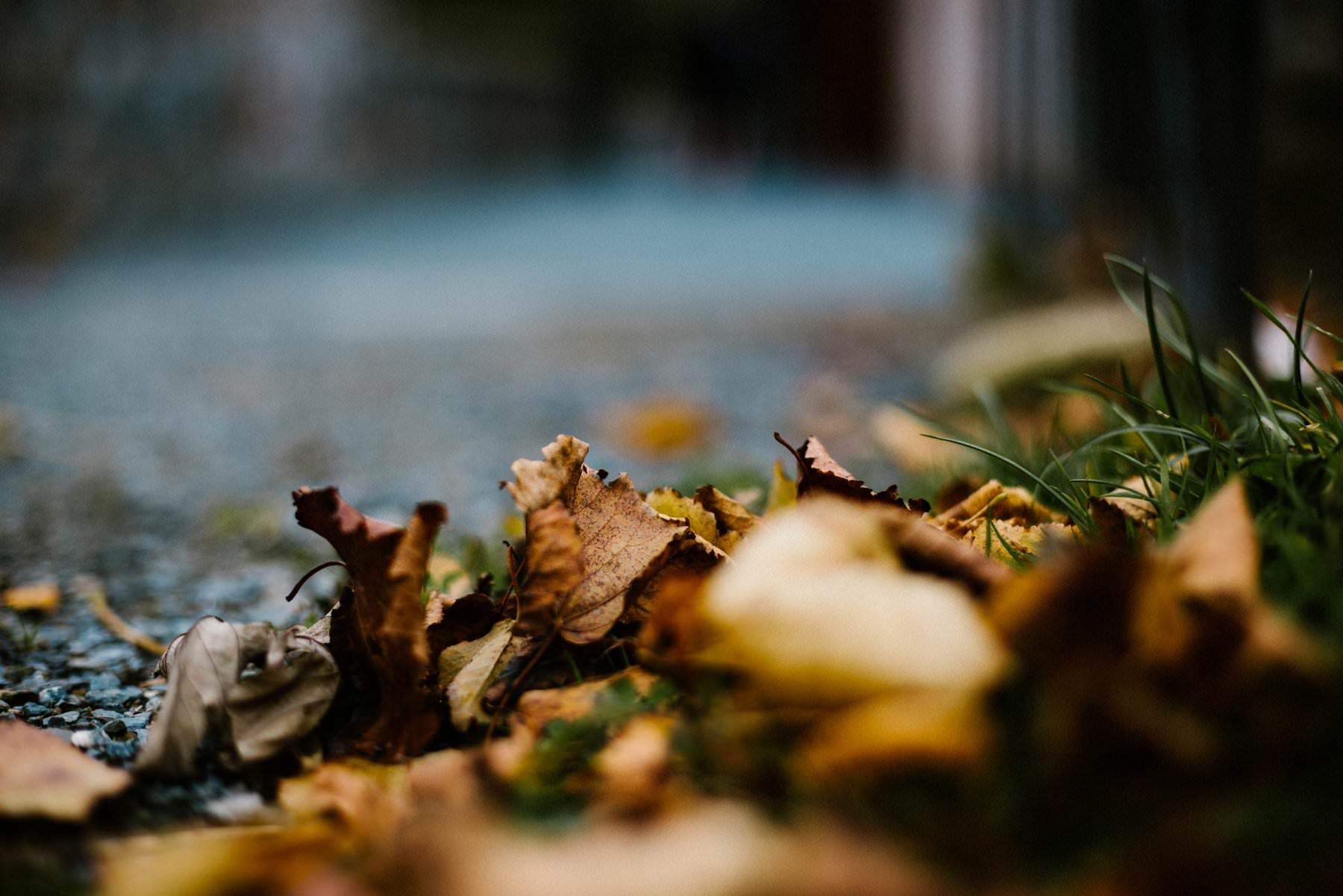 autumn wedding photography northern ireland