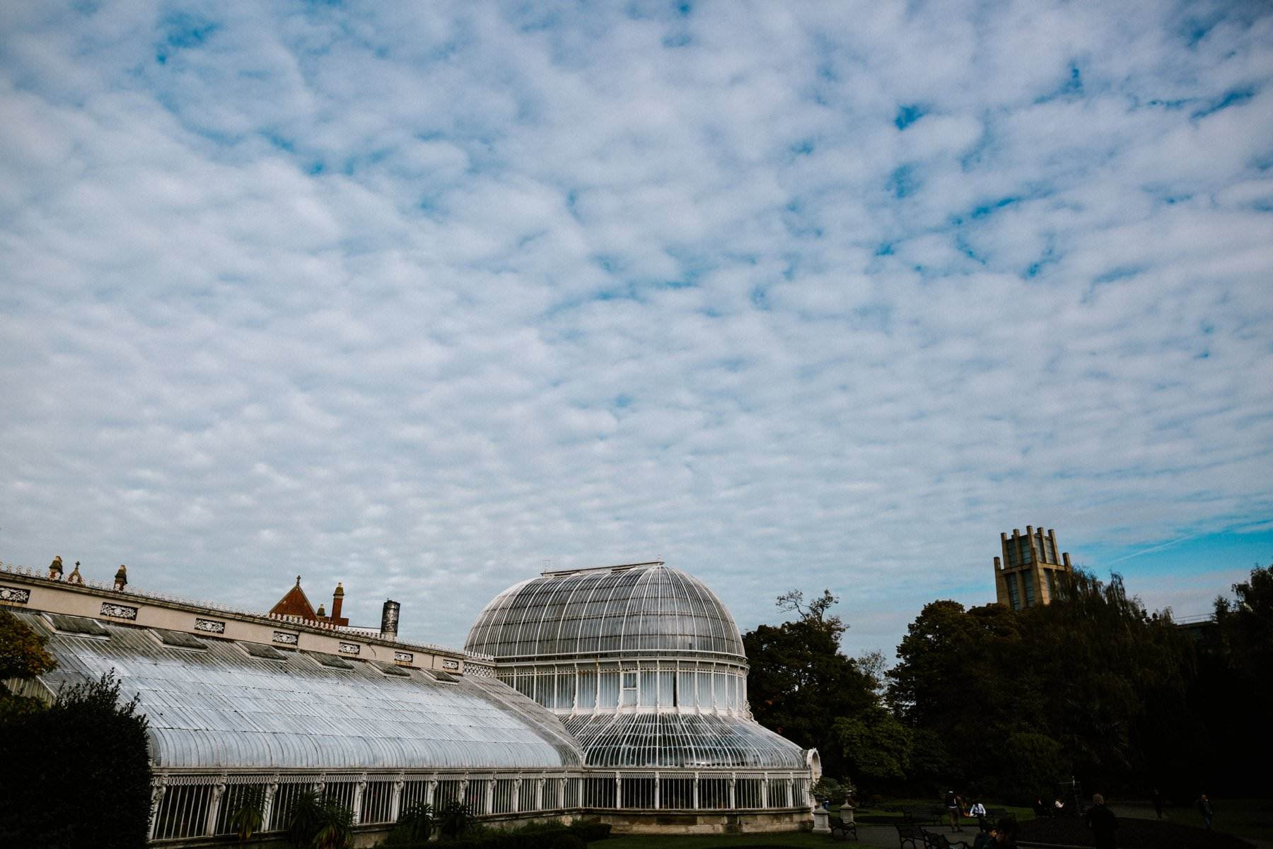 botanic gardens wedding photography northern ireland