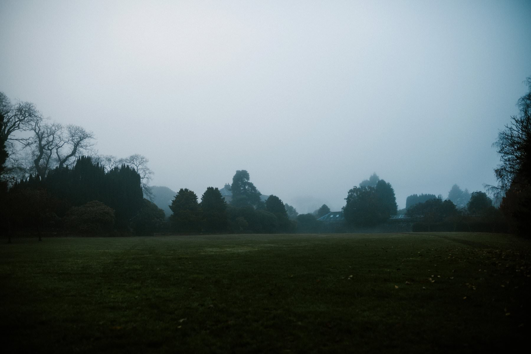 a foggy day at larchfield estate