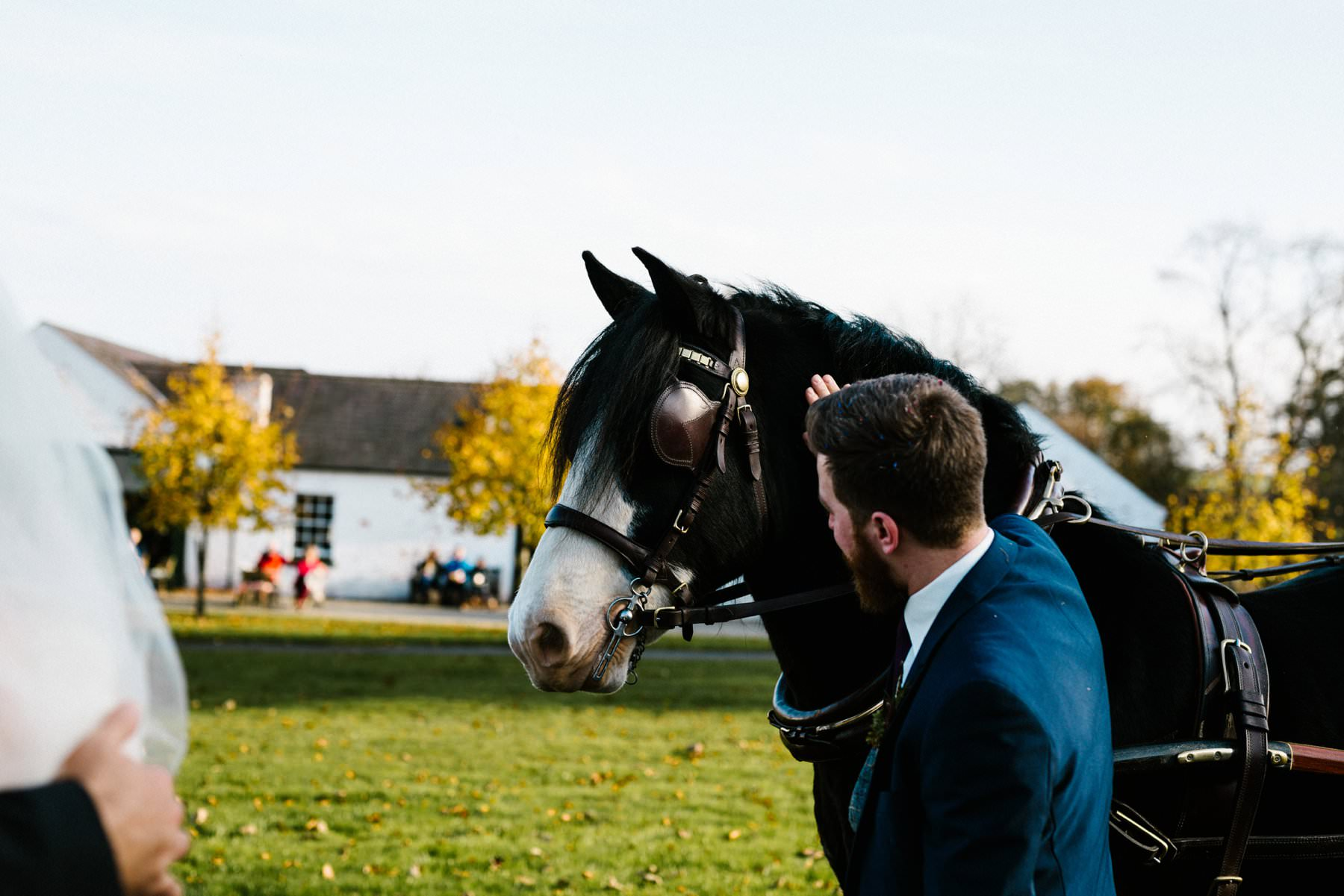 groom with horse wedding photographer northern ireland