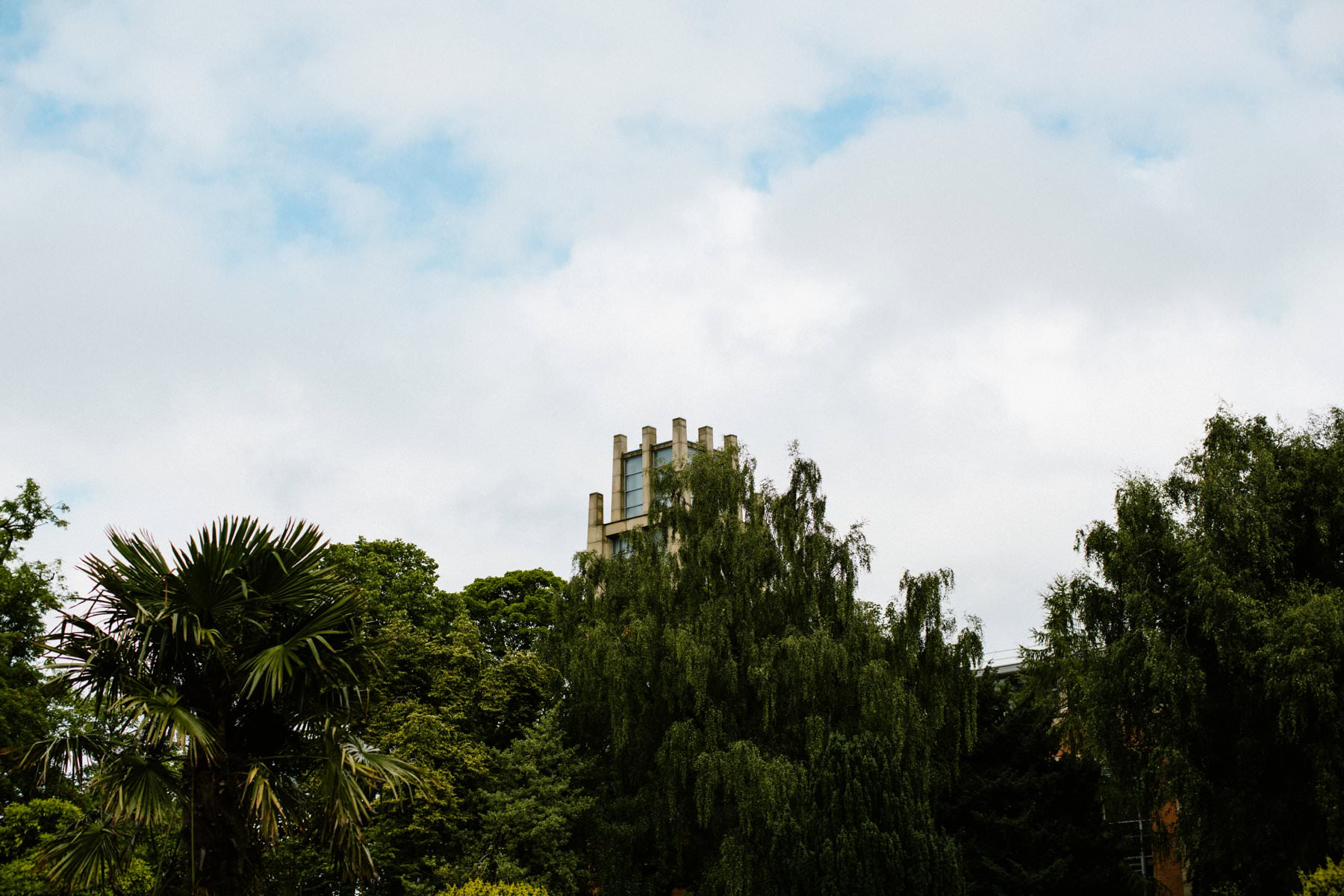 botanic gardens belfast surprise proposal