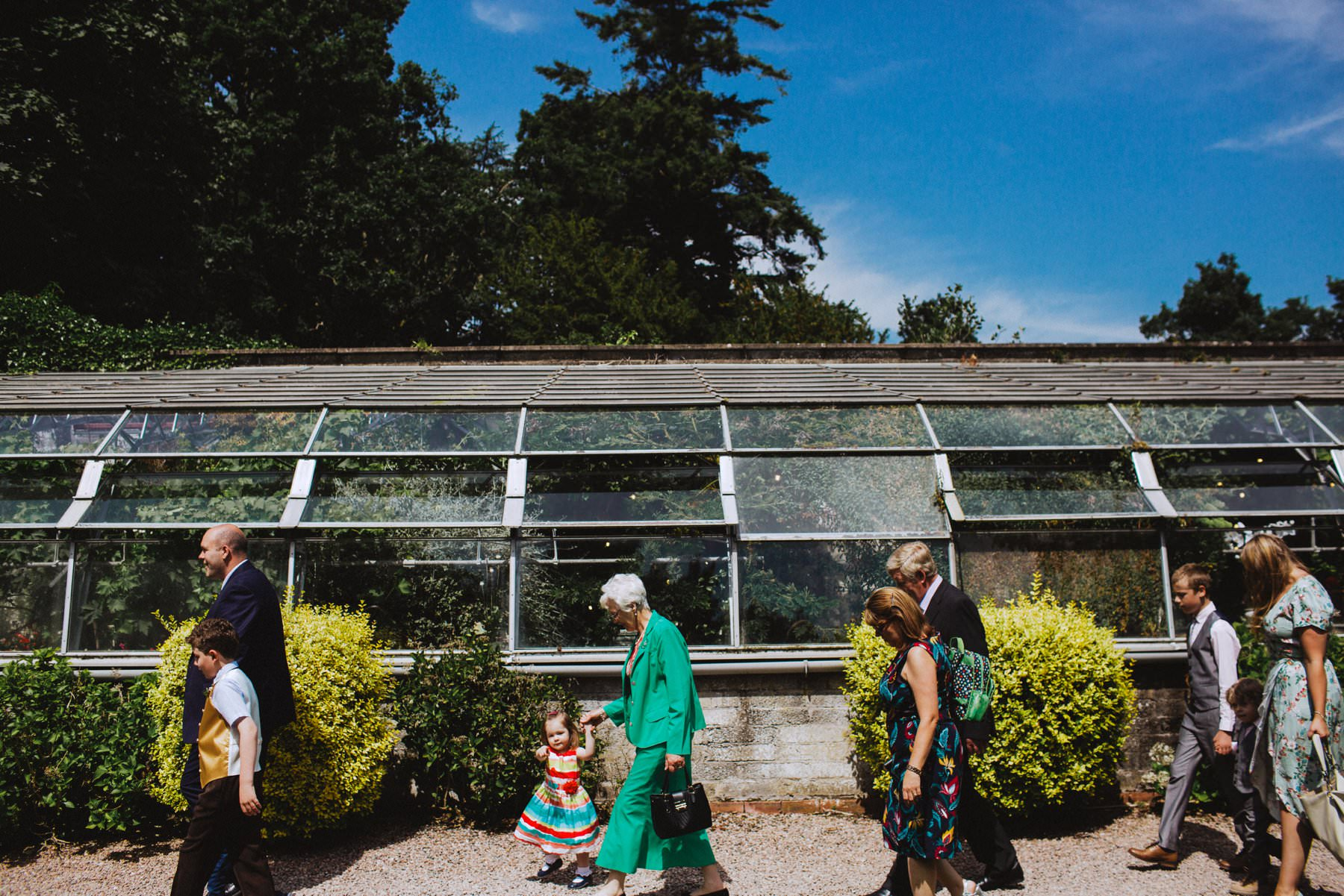 wedding guests walking past the green house of larchfield estate